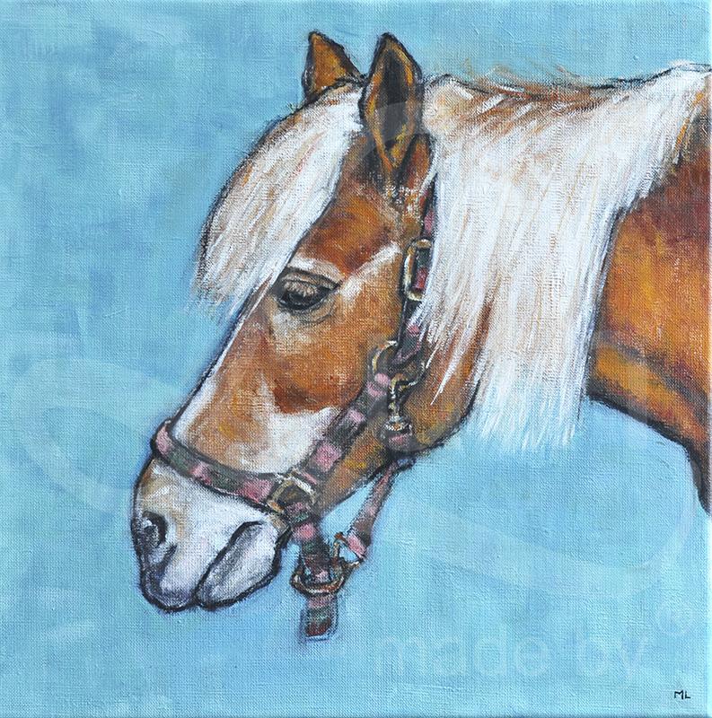 Paard-40x40cm-acryl